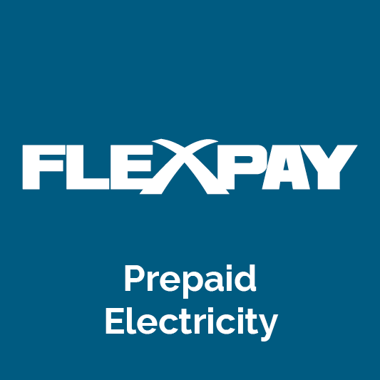 flex pay icon